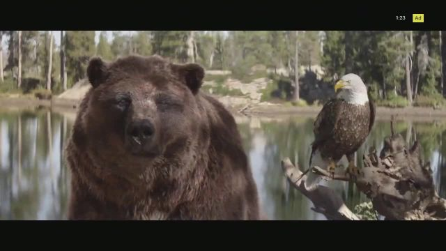 2021 Kia Sorento TV Commercial Ad 2021, The Bear and the Eagle' Song by The Heavy