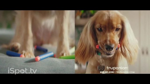 Trupanion TV Commercial Ad 2021, Pets Will Be Pets